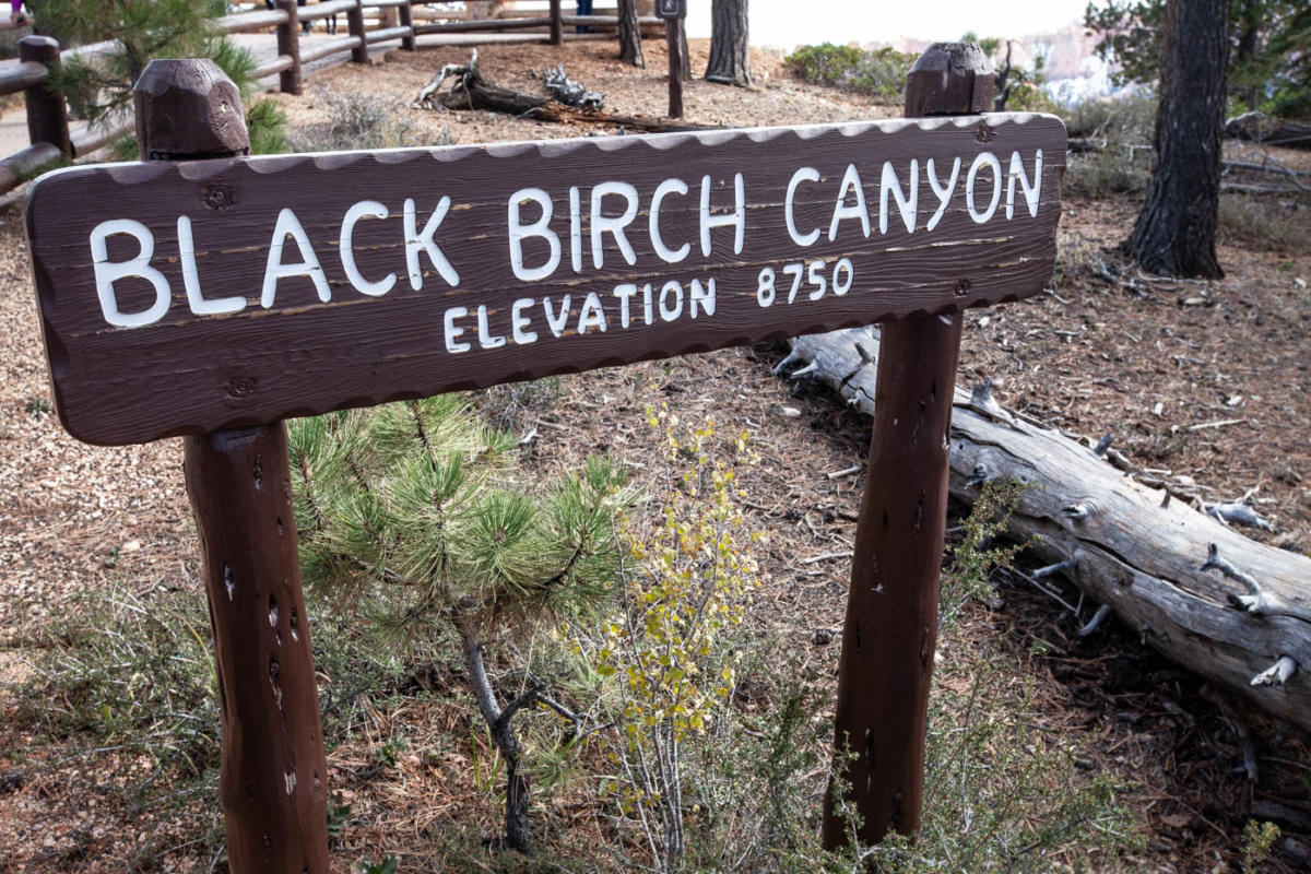 18-Mile Scenic Drive Black Birch Canyon Overlook at Bryce Canyon National Park #vezzaniphotography